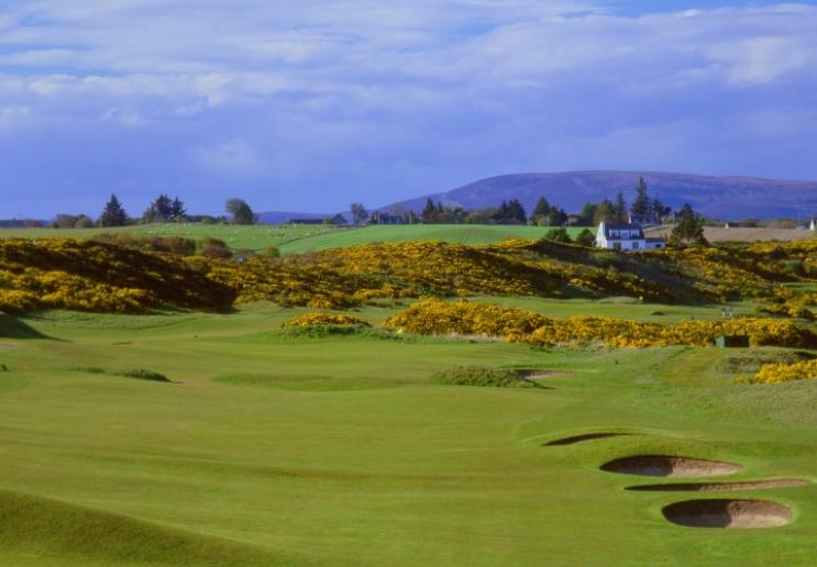 royal dornoch golf course image